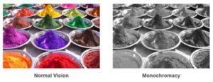 Monochromacy